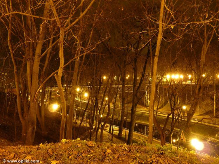 Вечер, деревья и озеро