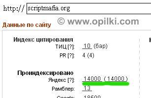 Яндекс меня полюбил