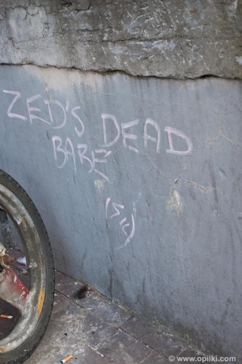 А где Зед?
